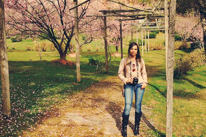 46a. Festa da Cerejeira